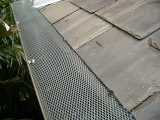 Gutter guard in Isle of Wight